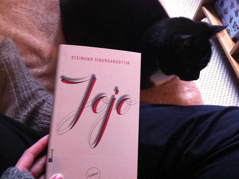"""Lesezeit mit Katze: """"Jojo"""" von Steinunn Sigurðardóttir, rowohlt, 187 Seiten, 19,95 EUR, eBook: 16,99 EUR"""